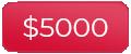 5000 dollars
